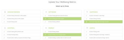 Ginsberg Wellbeing Metrics
